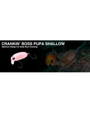 Nories Crankin'Boss Pupa Shallow