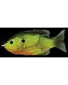 Sunfish Hollow Body
