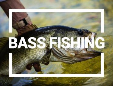 Bass Fishing Gear-Bass fishing lures