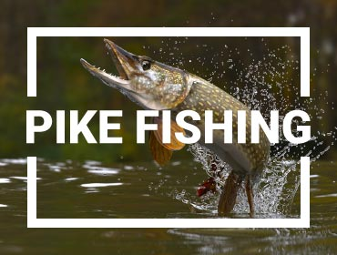 Pike Fishing Gear-Pike Spinning